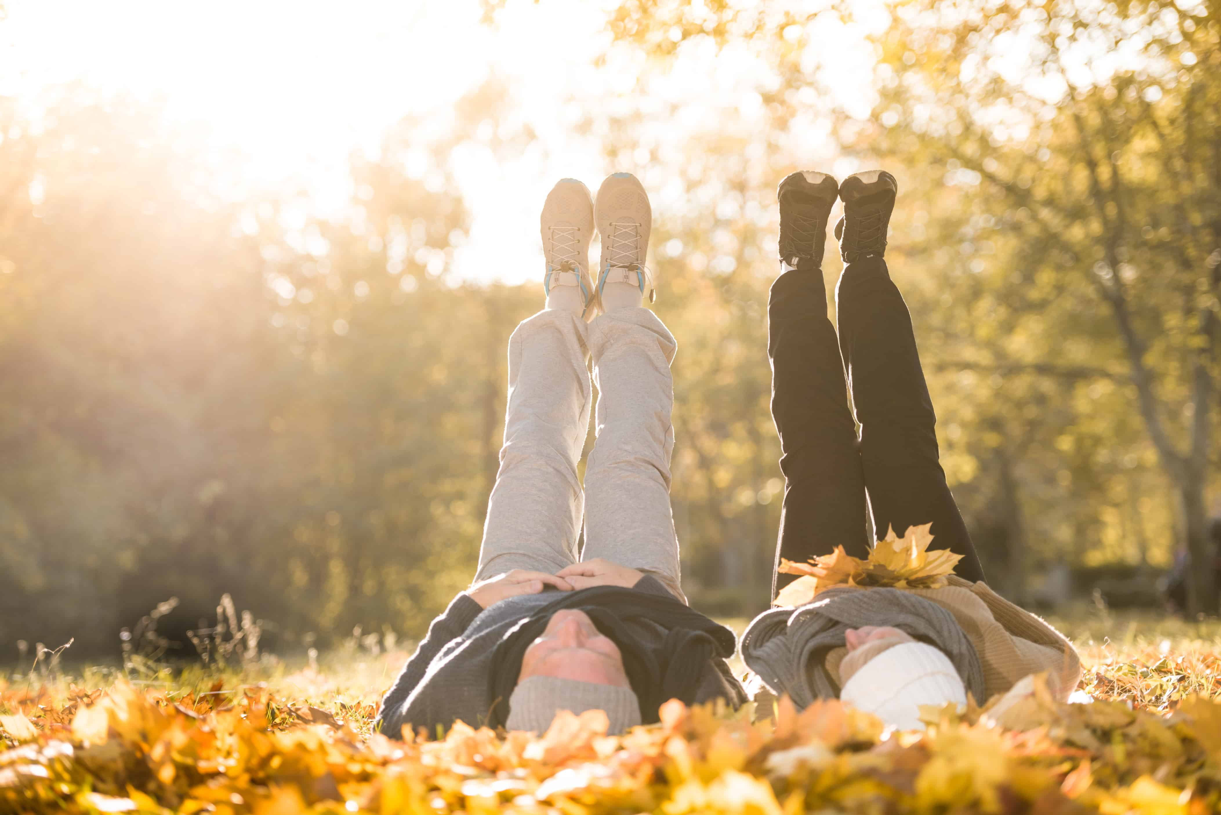 4 Fun Senior Activities for the Fall